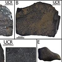 Fotografía de la Universidad de Costa Rica con muestras de meteoritos.