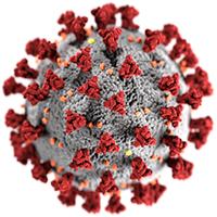 Imagen digital del coronavirus